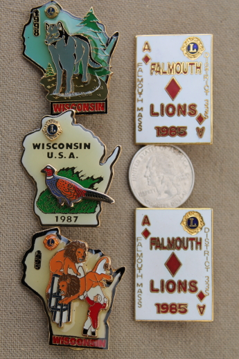 Wisconsin Enamel Pin Pin Badge Lapel Pin Enamel Pin Soft