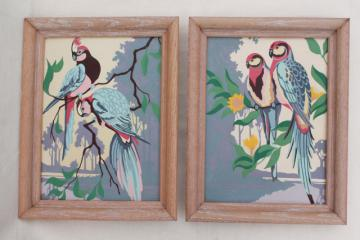 1950s vintage paint by number pictures, pink & blue parrots, retro wall art
