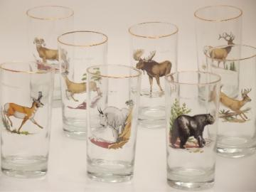 Gander Mt. game animals drinking glasses set, vintage West Virginia glass
