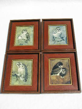 Set 70s vintage owls pictures, retro hippie wall art