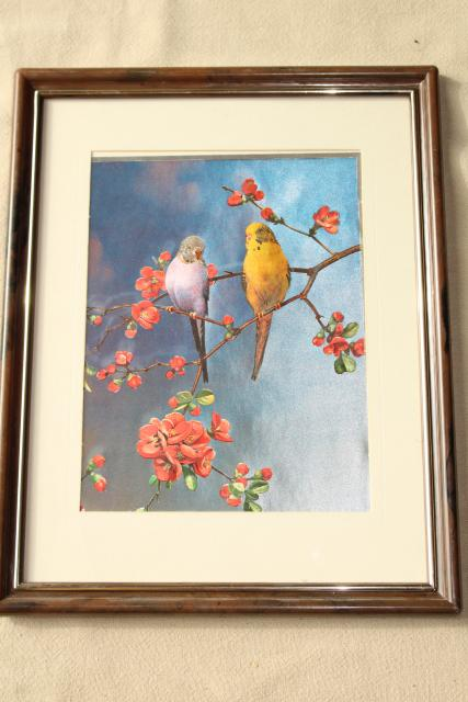 vintage 3-D foil holographic pictures, parakeet budgies bird art prints framed pair
