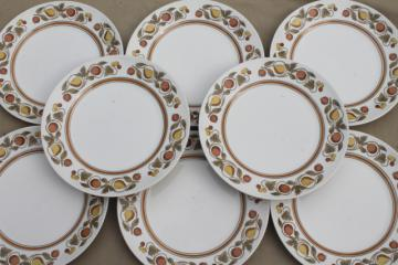 vintage Franciscan Pickwick rustic fruit whitestone stoneware china dinner plates