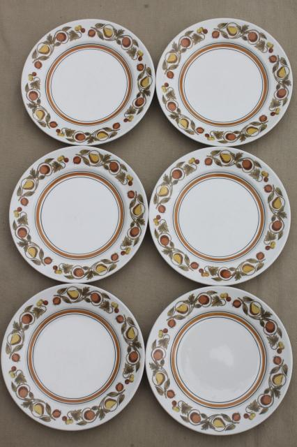 vintage Franciscan Pickwick rustic fruit whitestone stoneware china plates set of six & vintage china dishes and dinnerware
